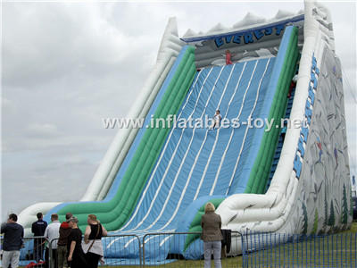 Giant inflatable slide,CLI-1028