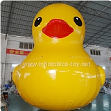 Popular Inflatable Duck for Advertising